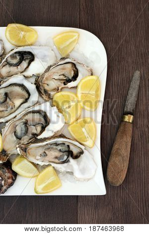 Oysters on ice on a porcelain plate with lemon fruit and antique oyster knife on old oak wood background.