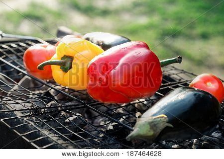 Close up different grilled vegetables - Red and yellow pepper eggplant and tomato on the grid grill