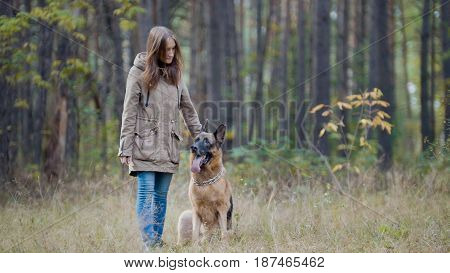 Blonde hair female playing with her pet - german shepherd - walking on a autumn forest , telephoto