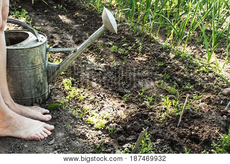 a Large iron watering can watering plants and feet