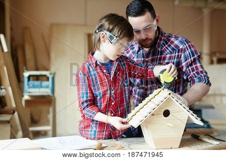 Boy measuring length of starling-house roof