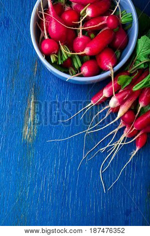 Fresh Radish In Blue Bowl. Top View. Bunch Of Small Radishes.  Copy Space.