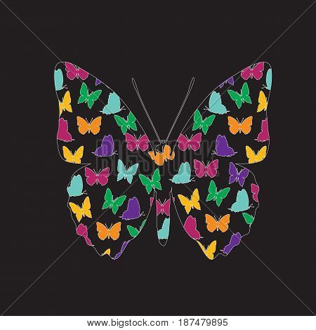 Transparent silhouette of a butterfly on a black background. Vector picture of color moths.