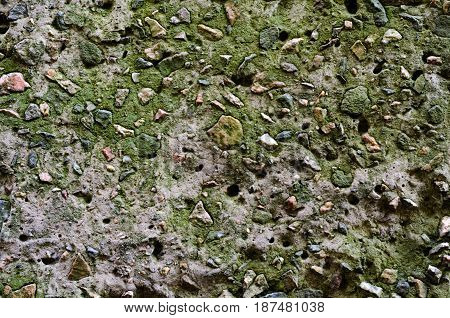 Texture of a stone wall overgrown with green moss