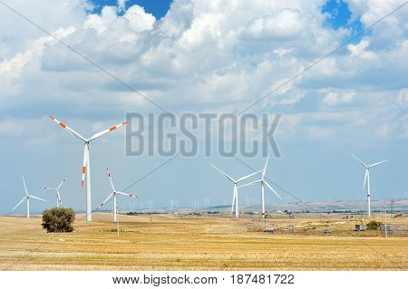 Wind generator turbine in a field - sustainable energy concept