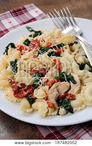 Warm salad pasta with chicken sun dried tomatoes spinach pepper and flavored parmesan cheese