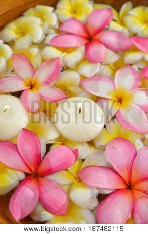 many colorful frangipani with candle in water wooden bowl