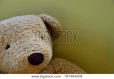Bear stuffed toy near the wall of the room