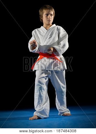 Little boy martial arts fighter isolated
