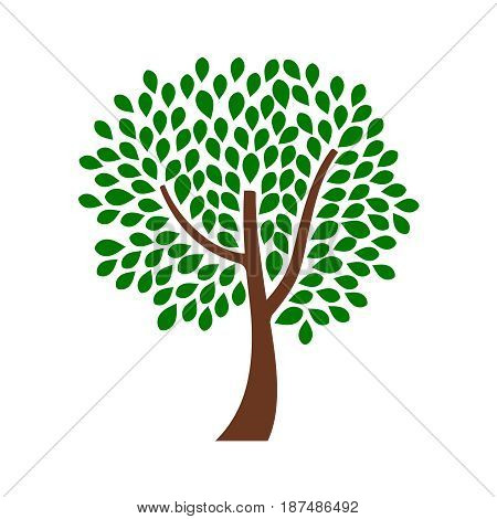 Ornamental tree design with green drop shape leaves. Vector illustration