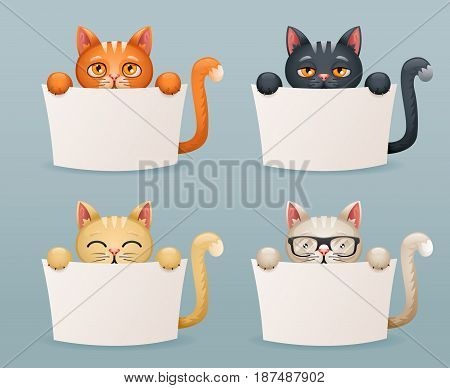 Beggar cats animals help need paws hold blank paper cartoon 3d characters set vector illustration