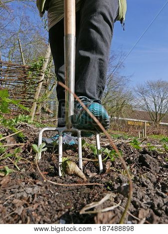 A picture of a pitchfork as it's being pushed into the ground by someone's foot.