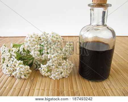 Herbal tonic with yarrow in glass bottle