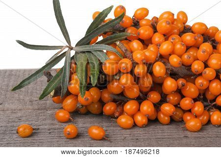 Sea buckthorn branch on a wooden table isolated on white background.