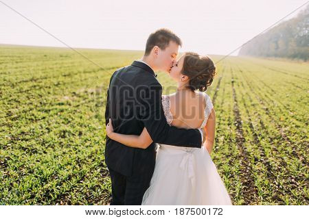 The kissing newlyweds in the green field. The back view