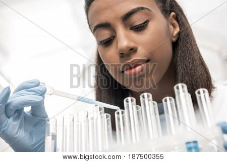 Low Angle View Of Young Scientist Working With Test Tubes And Reagents In Chemical Lab