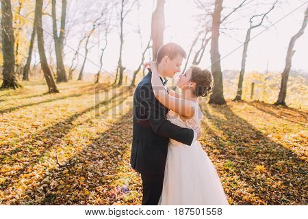 Romantic horizontal photo of the hugging newlyweds in the autumn park