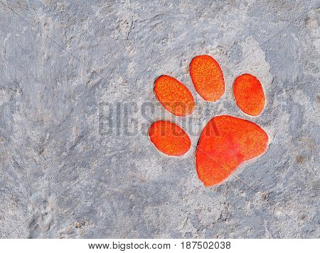 Footpath cement board with orange paw ceramic decoration.