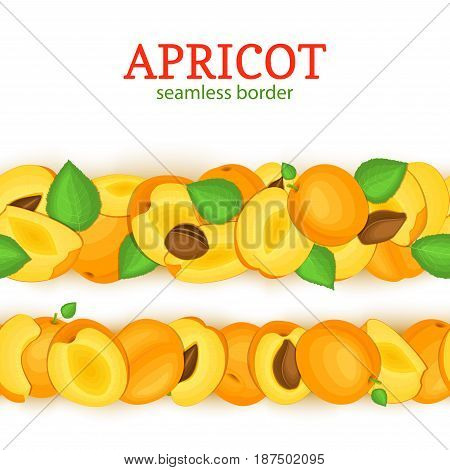 Ripe apricot Horizontal seamless borders . Vector illustration card Wide and narrow endless strip with Juisy apricots fruits whole and slice, leaf for design of juice breakfast, healthy eating, detox