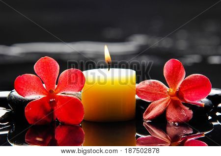 Two red orchid with black stones , candle on wet background