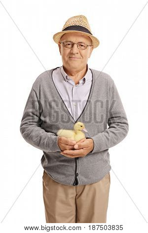 Elderly man holding a duckling and looking at the camera isolated on white background