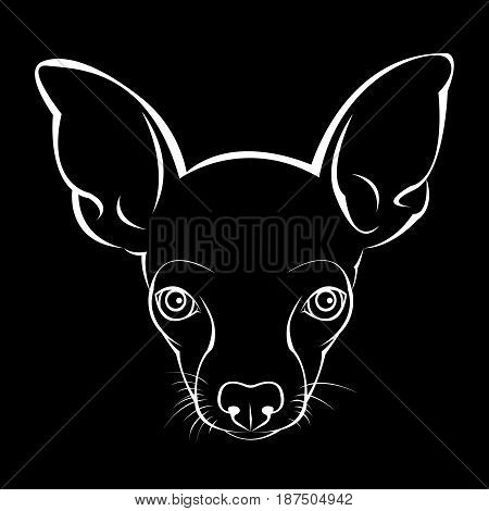 dog vector illustration terrier design head anima