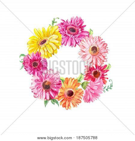 Wreath of pink gerberas or chamomiles isolated on white. Watercolor drawing