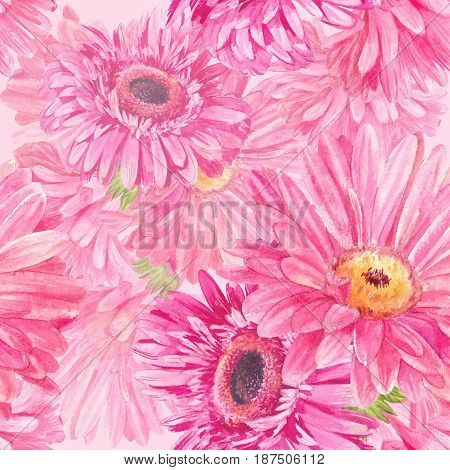 Pink flower pattern. Seamless watercolor summer texture. Gerberas or chamomiles background