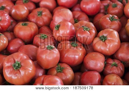 Qualitative background from tomatoes. Fresh tomatoes. Red tomatoes. Village market organic tomatoes