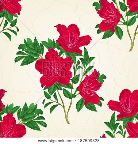 Seamless texture red rhododendron twig mountain shrub vintage hand draw vector illustration