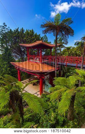 Monte Tropical Garden in Madeira Portugal - travel background
