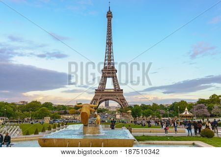 Paris France - May 1 2017: Eiffel tower view from Trocadero in evening with a blue sky in a background on May 1 2017 in Paris France.