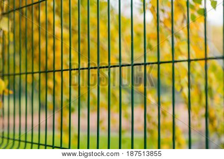 Green metal fence on the background of yellow leaves of trees