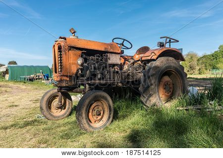 Old orange agricultural tractor in the campaign