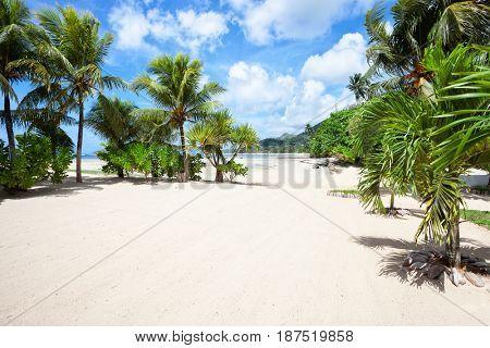 Empty tropical beach with Coconut palm trees.  Mahe, Seychelles.