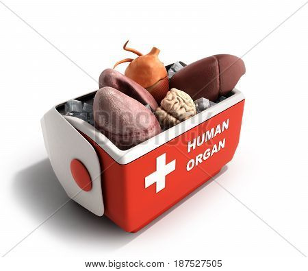 Organ Transportation Concept Open Human Organ Refrigerator Box Red 3D Render  Background