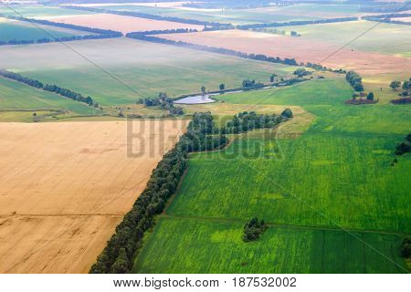 Aerial View Of Seeded Fields