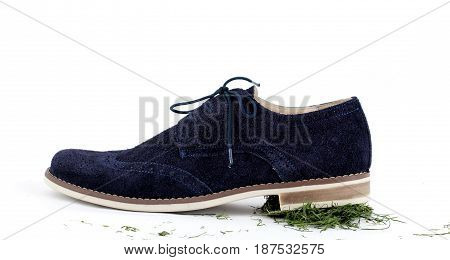 Male Shoes On White Background
