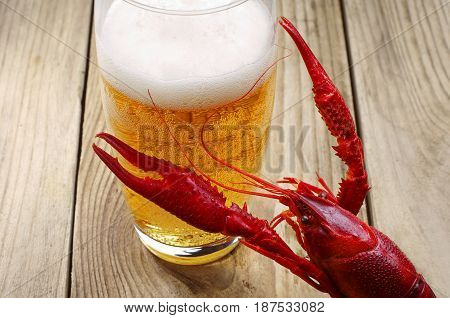 Red boiled crawfish and a glass of beer on a wooden table