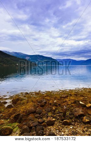 Fjord Hardanger Norway - nature and travel background