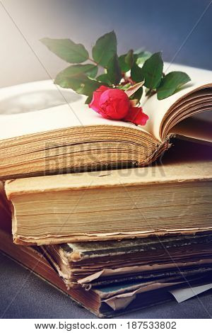 Pile of old books with rose. Romantic retro style