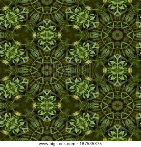 Abstract decorative plant background. Seamless colorful pattern.