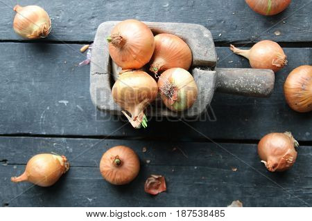 Large onion harvest. Yellow onions on wooden table