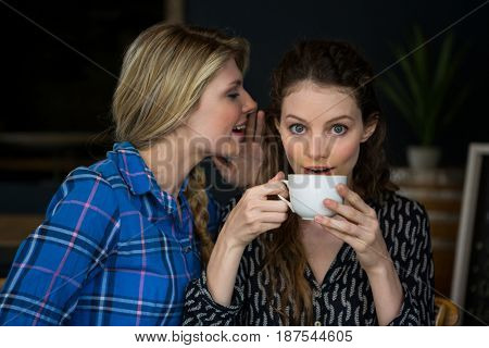 Young woman whispering secret into female friend ear in cafe