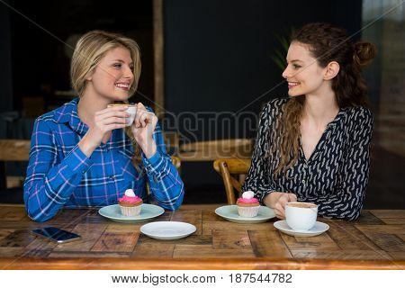 Beautiful young female friends having coffee while talking in cafeteria