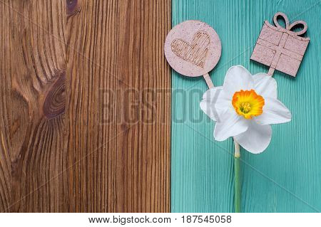 One white daffodil and wooden decor in the form of a heart and a gift on a wooden background. Template of greeting card invitation. Flower on a wooden background of two colors is brown and turquoise.