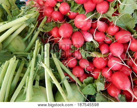 Bunch Of Red Radishes Sold At The Market