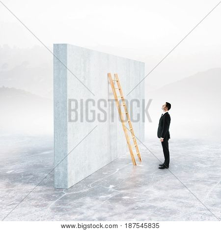 Side view of businessman climbing ladder leaning on concrete wall. Landscape background. Success concept. 3D Rendering