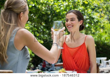 Smiling young female friends toasting wine glasses at restaurant