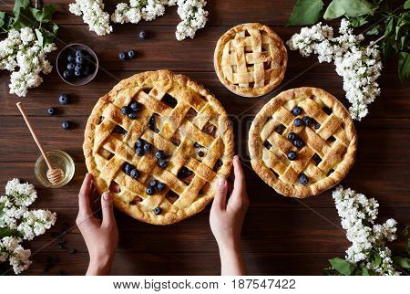 Homemade bakery pastry apple pie pies on dark wooden kitchen table with raisins, blueberry, honey and apples. Traditional dessert on Independence Day. Flat lay food background. Top view